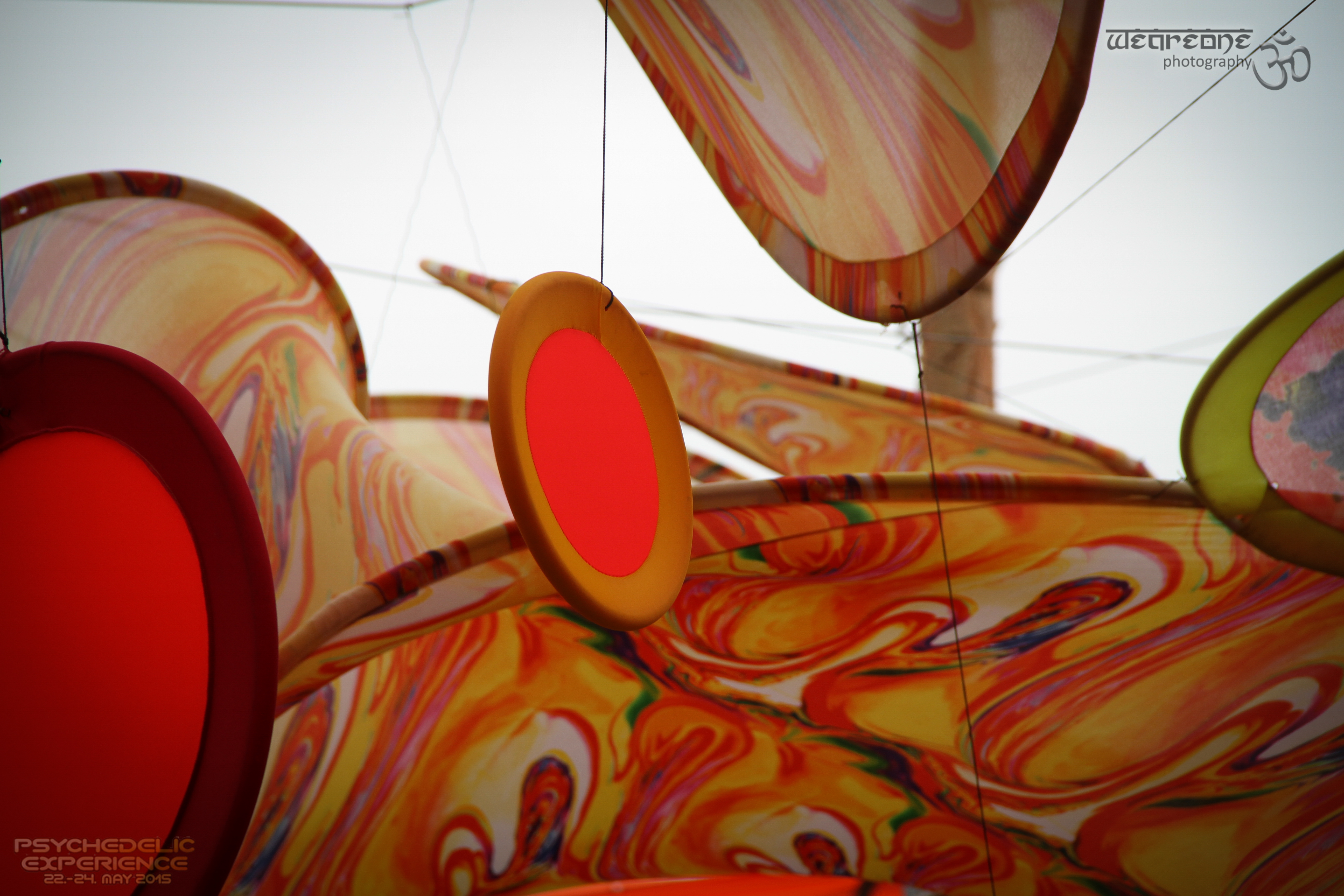 Psychedelic Experience 2015, Germany - Chaishop com